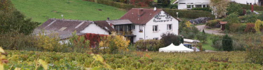 herrenbergerhof